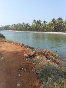The river sita