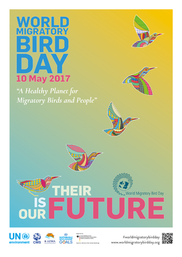 The World Migratory Birds Day