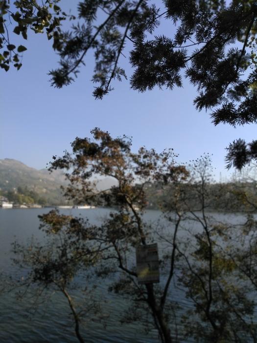lake Bhimtal (2)