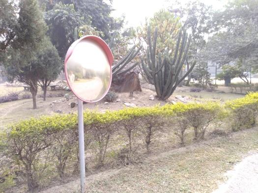 NIFM faridabad (7)